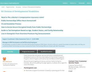 PCG Public Partnerships